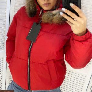 Заказать красную короткую женскую куртку из плащевки с мехом (размер 44-48) недорого