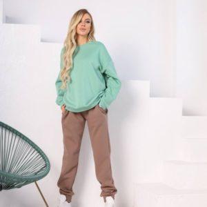 Заказать женский спортивный фисташка/мокко костюм-комбинация со свитшотом (размер 42-48) онлайн